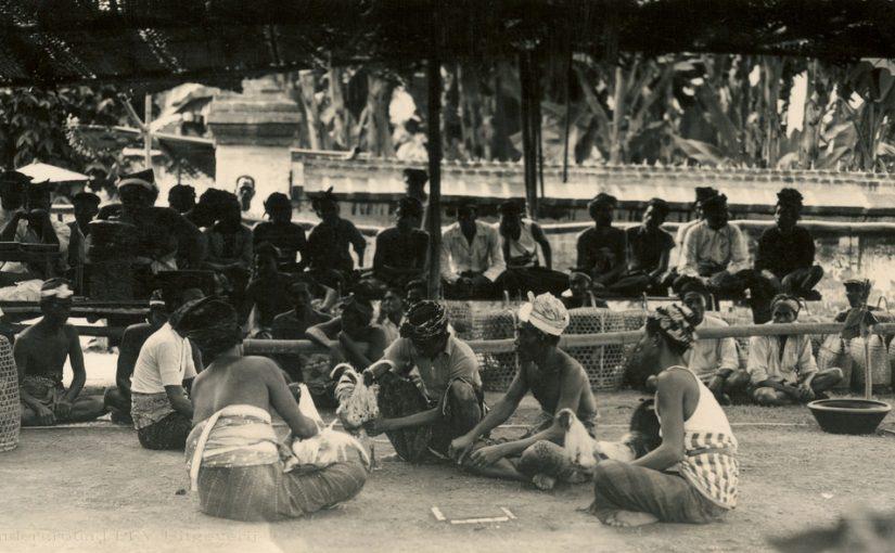 Tajen ( Sabung Ayam Bali ) - Carcan Siap Tajen dalam Lontar Pengayam-ayam