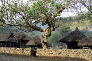 Alasan Rumah Bali Kuno Tidak Ada Sanggah Kemulan